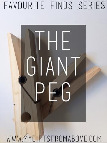 mgfagp.cover02